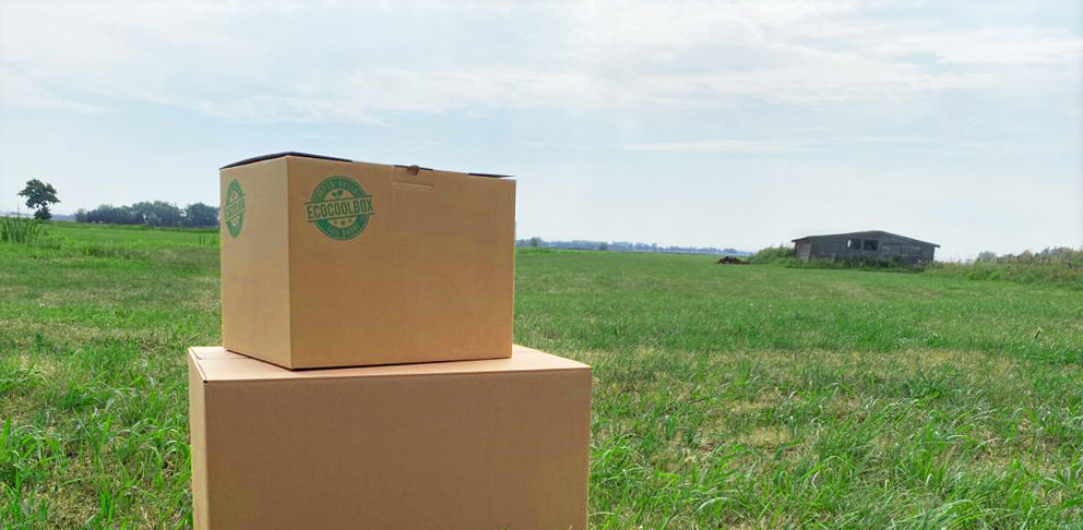 Sustainable refrigerated shipping with EcoCoolBox